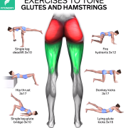 EXERCISES TO TONE YOUR GLUTES AND HAMSTRINGS